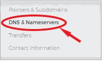 dns nameserver to set up a website